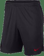 Nike PSG 2019/20 rövidnadrág